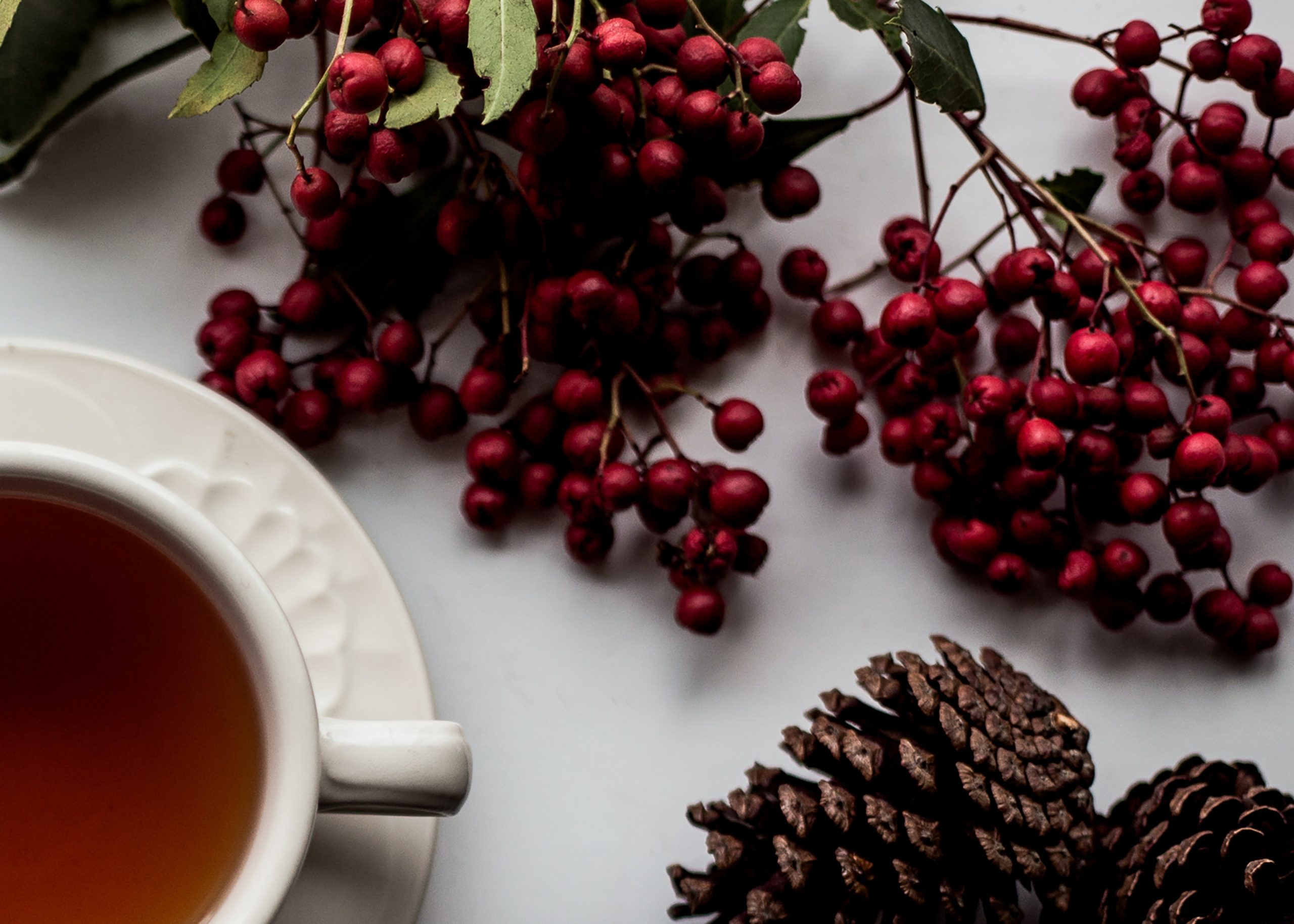 Holiday Blog Header Photo