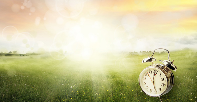 Daylight Savings Time: Updating Your Insulin Pump   The LOOP Blog